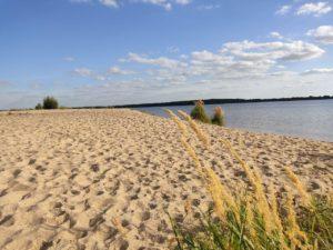 Sand Strand Goitzsche See