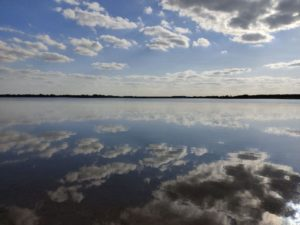 Spiegelglattes und klares Wasser am Seelhausener See